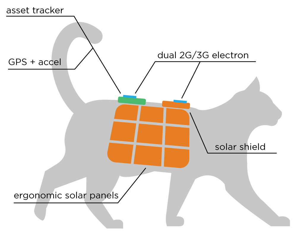 cation-diagram.png